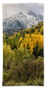 Fall Color In The Rockies Near Ouray Dsc07913 Beach Towel