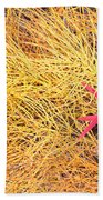 Fall Colored Horsetail And Fireweed  Beach Towel