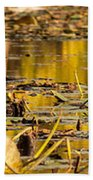 Fall Colored Pond Beach Towel