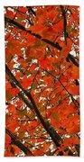 Fall Colors 2014-10 Beach Towel