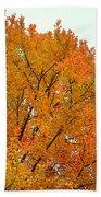 Fall Colors 2014-11 Beach Towel