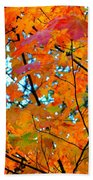 Fall Colors 2014-5 Beach Towel