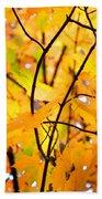 Fall Colors 2014-7 Beach Towel
