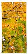 Fall Colors 2014-8 Beach Towel