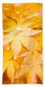 Fall Colors 6664 Beach Towel