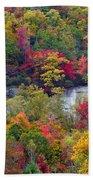 Fall Colors Along Tanasee Road Beach Towel