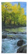 Fall Colors And The Little Salmon River Beach Towel