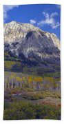 Fall Colors At Gunnison National Forest Beach Towel