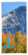 Fall Colors Cover Work Beach Towel