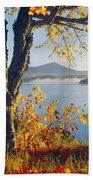 Fall Colors Frame Whiteface Mountain Beach Towel