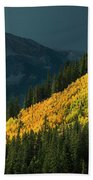Fall Colors In Aspen Colorado Beach Towel