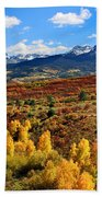 Fall Colors In Ridgway Colorado Beach Towel