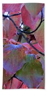 Fall Dogwood Leaf Colors 2 Beach Towel
