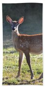 Fall Fawn Beach Towel