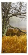 Fall Ferns And Fog Beach Towel