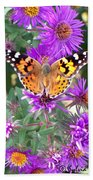Fall Flutterby Beach Towel