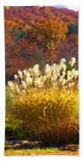 Fall Foilage In The Mountains Beach Towel