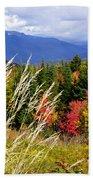 Fall Foliage 2 Beach Towel
