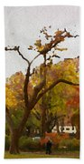 Fall In Central Park Beach Towel