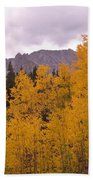 Fall In Maroon Bells Beach Towel