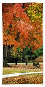 Fall In The Park Beach Towel by Christina Rollo