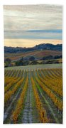 Fall In Wine Country Beach Towel