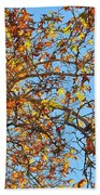 Fall Is Here Beach Towel