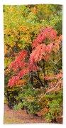 Fall Landscape 3 Beach Sheet