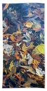 Fall Leaves In A Pond Beach Towel