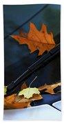Fall Leaves On A Car Beach Sheet