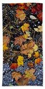 Fall Leaves On Pavement Beach Towel by Elena Elisseeva
