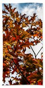 Fall Maple Leaves Beach Towel