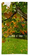Fall Maple Tree In Foggy Park Beach Towel by Elena Elisseeva