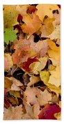 Fall Maples Beach Sheet
