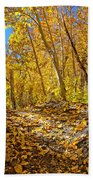Fall On The Forest Floor Beach Towel