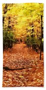 Fall Path Beach Towel