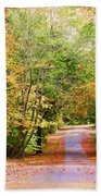 Fall Pathway Beach Towel by Judy Vincent