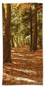 Fall Pathway Beach Towel