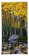 Fall Pond In Mammoth Beach Towel