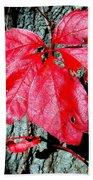 Fall Red Leaf Beach Towel