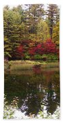 Fall Reflection And Colors Beach Towel