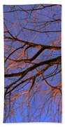 Fall Reflections By Diana Sainz Beach Towel