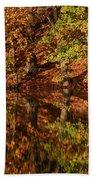 Fall Reflections Beach Towel by Karol Livote