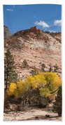 Fall Season At Zion National Park Beach Towel