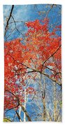 Fall Sky Beach Towel