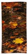 Fall Stream Bed Beach Towel