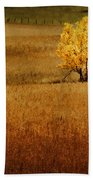 Fall Tree And Field #1 Beach Towel