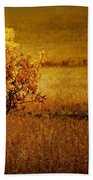 Fall Tree And Field #2 Beach Sheet
