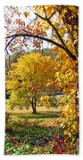 Fall Trees 4 Of Wnc Beach Towel