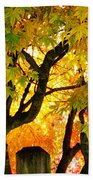 Fall Trees On A Country Road 3 Beach Towel